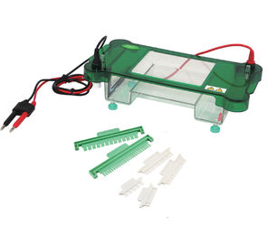 Auto Switch Off Horizontal Electrophoresis System 130 ×130 Mm Gel Size